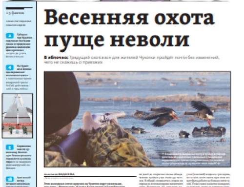 Газета «Крайний Север» (Анадырь)